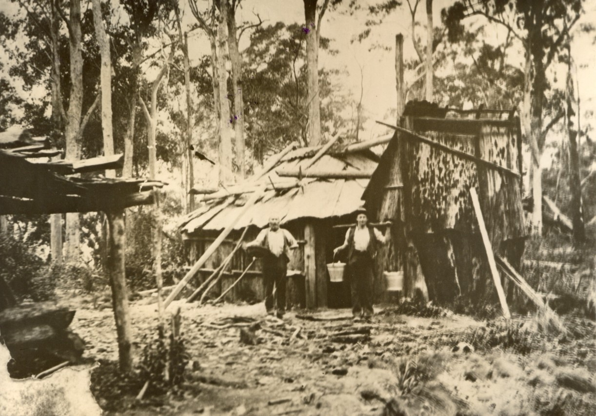Typical first settler's shanty 1890's – occupied while they cleared the land. EJW photo – RTRL.